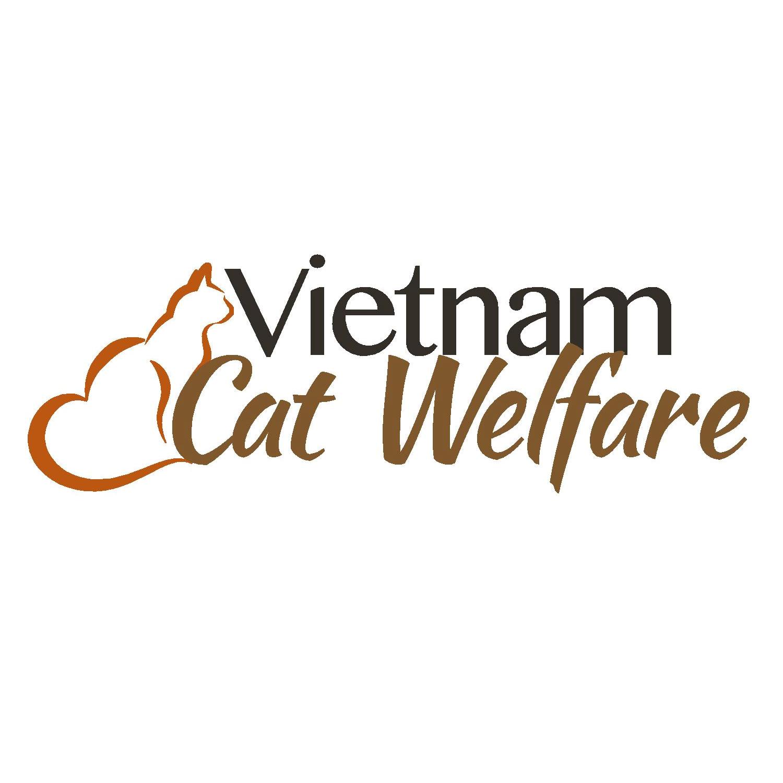 Local Charities Worldwide - Animals Charity Partner   Vietnam Cat Welfare