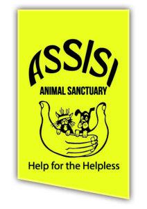 Local Charities Worldwide Charity Profile   Assisi Animal sanctuary in Ireland