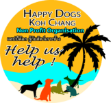 Animals Charity, dogs, strays, thailand