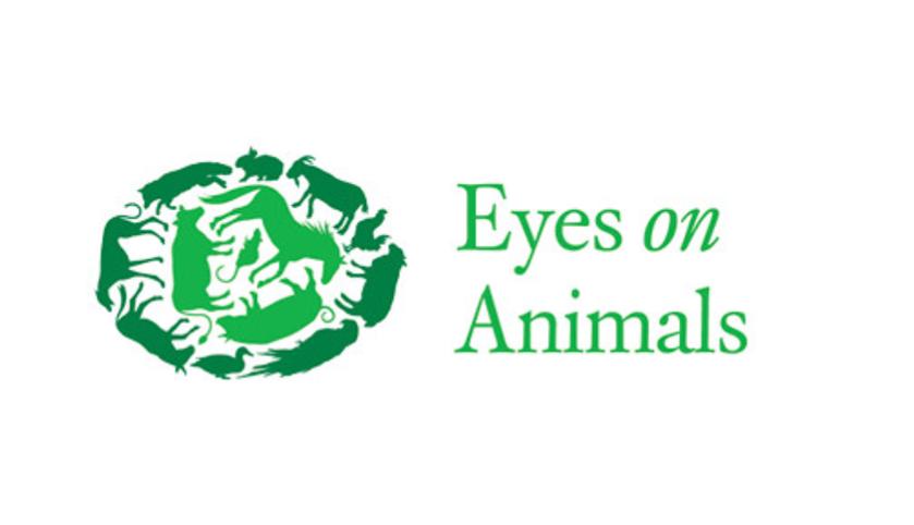Local Charities Worldwide   Animal Welfare Charity Profile - Eyes on Animals in Amsterdam, the Netherlands